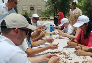 Canon Volunteers looking for right seeds of Ghaf to plant at Al Barari