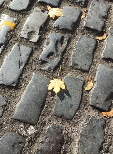 Cobble street & an autumn leaf