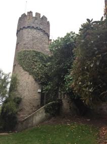 Malahide Castle1