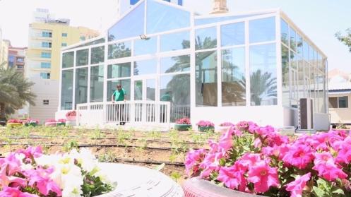 rashid-garden11